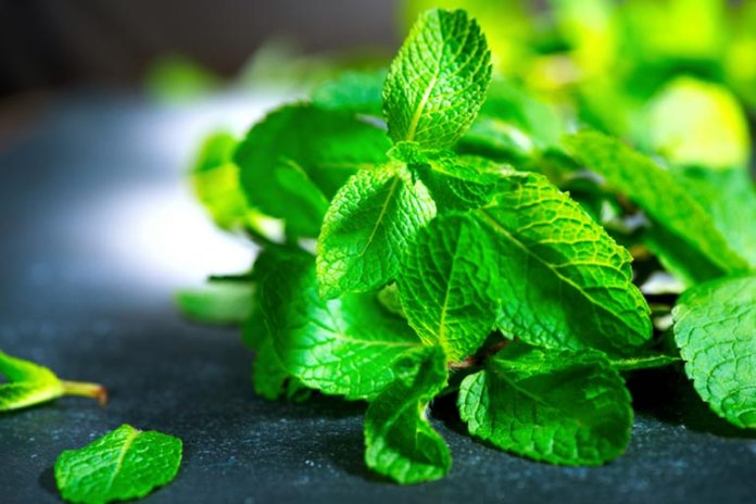 Make Ice Cream More Refreshing With Mint