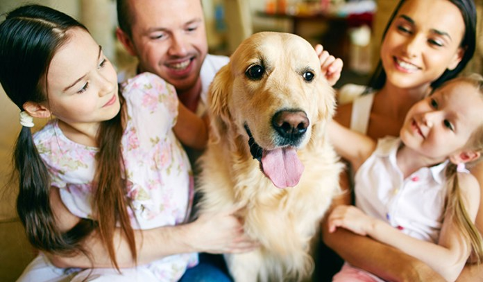 Dog owners tend to fall sick less often