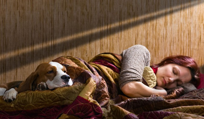 Dog owners have more regular routine, getting more sleep and rest