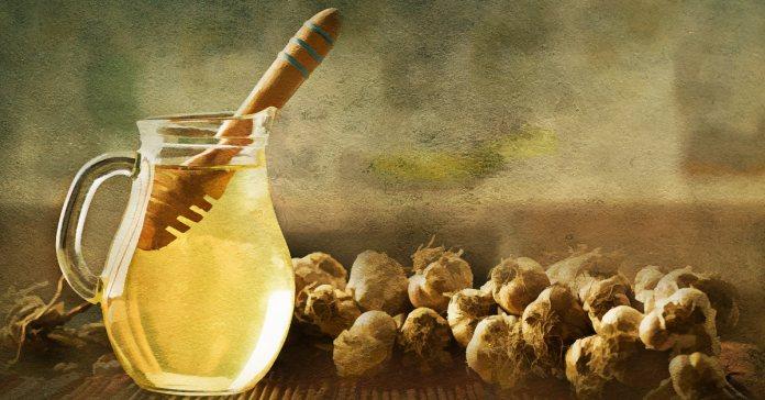 health benefits of garlic with apple cider vinegar and honey