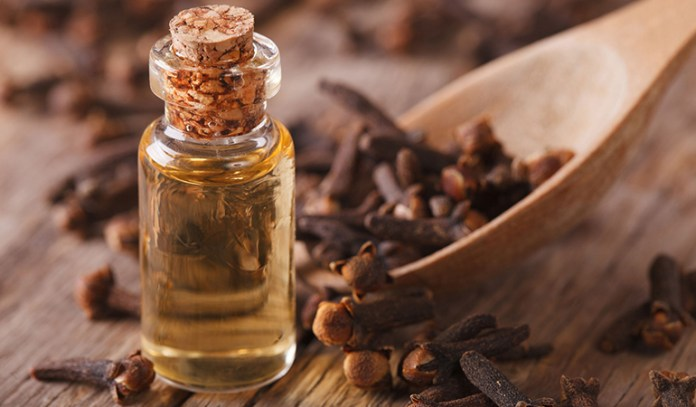 Clove oil is a great natural anesthetic which can be used for the pain