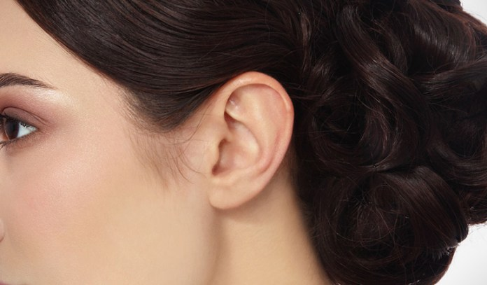 outer ear is unique to each individual