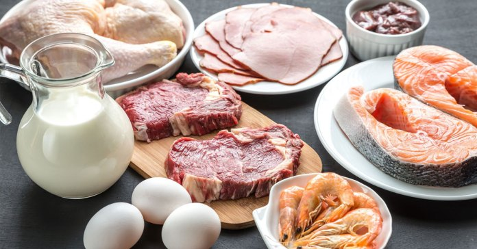 Proteins are the building blocks of the body