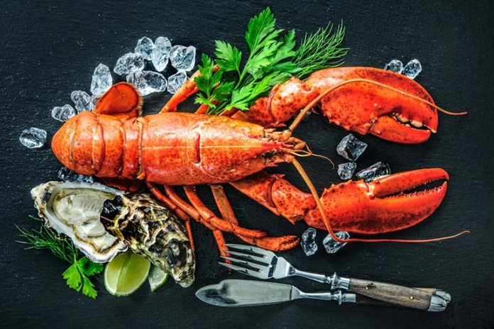 Shellfish are necessary as they are rich in omega-3 fatty acids