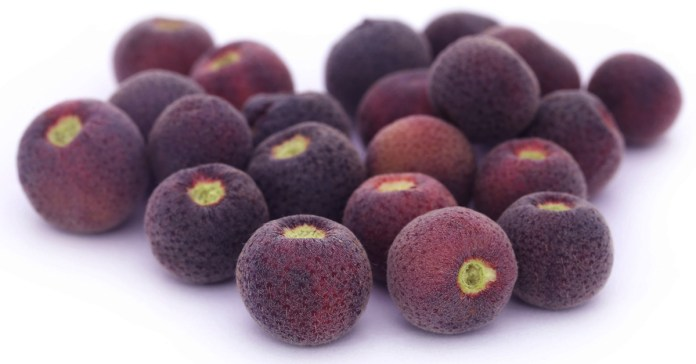 6 Reasons Why Falsa Fruit Is Good For Your Health