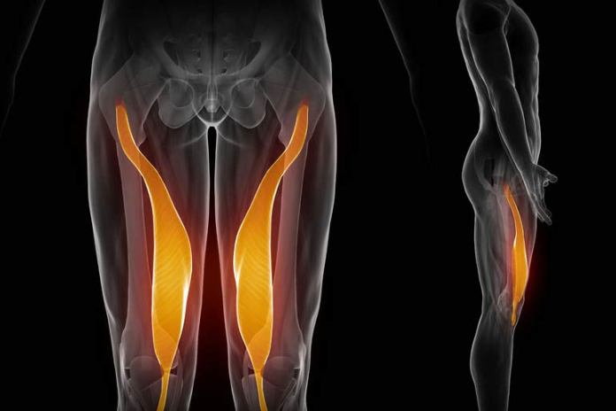 A strain in the groin muscles could cause hip pain