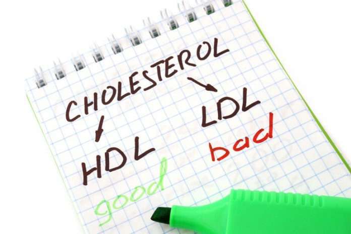 Pechay helps to regulate cholesterol levels