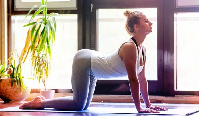 Cow pose will facilitate the proper functioning of the liver.