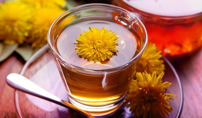 Dandelion Tea Can Purify Your Liver