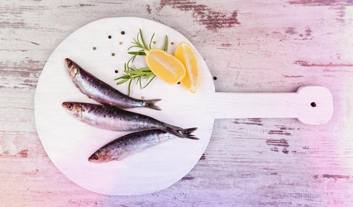 The European anchovy ranks the seventh most nutritious fish