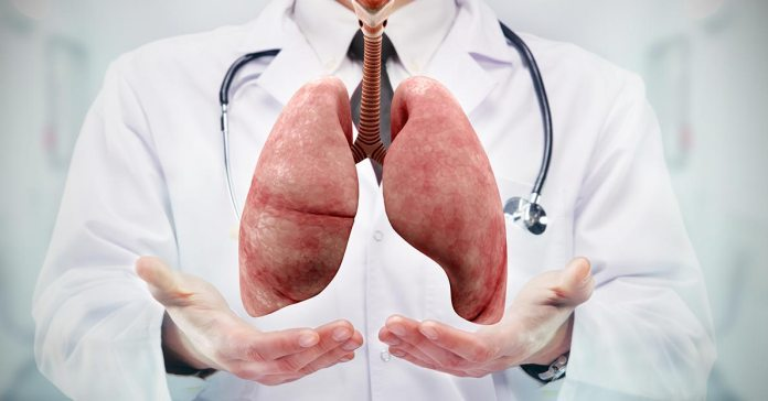 The health of our lungs can be promoted with simple measures at home.