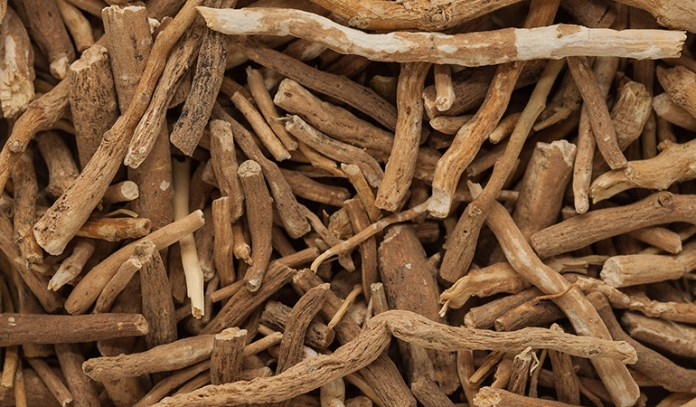 Ashwagandha can improve your cognitive health