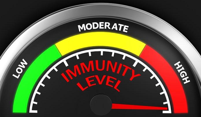 Black seeds enhance immunity