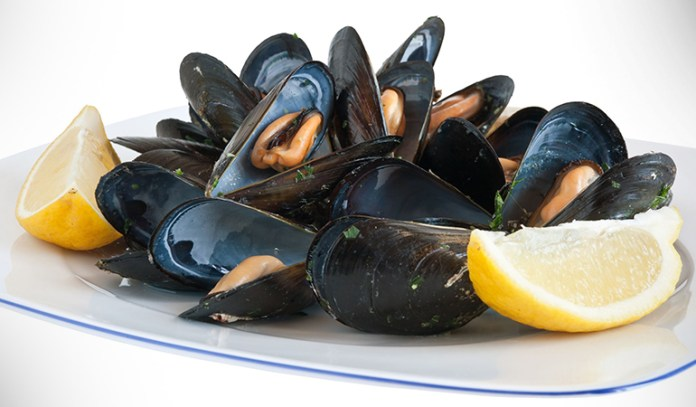 Blue mussels can help prevent erectile dysfunction