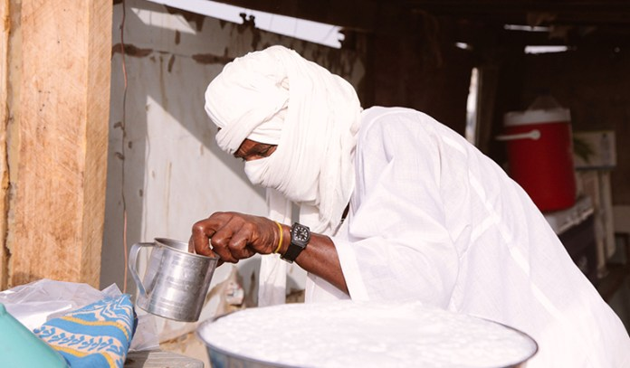 Camel milk is gluten free and low in fat