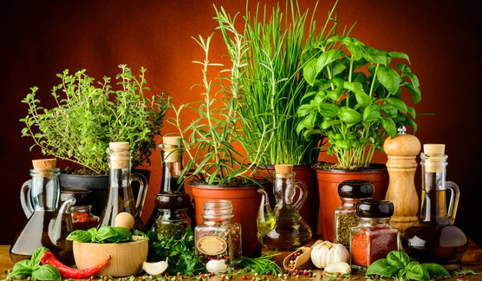 Herbs are a great way to add distinctive flavor to dishes