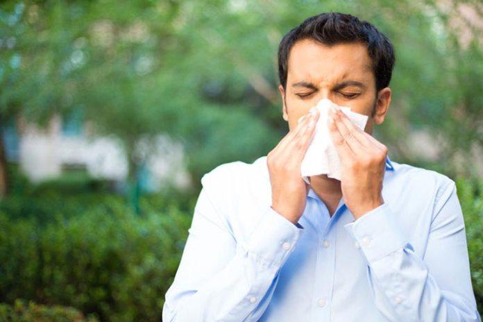 Yogurt can reduce allergy symptoms