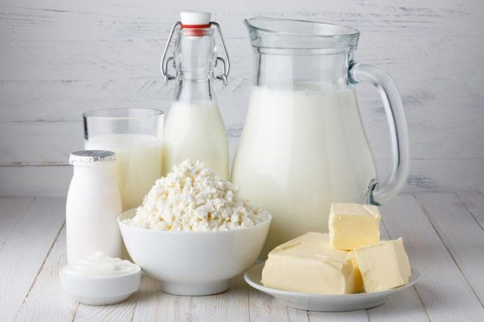 cheese and yogurt for a healthy breakfast
