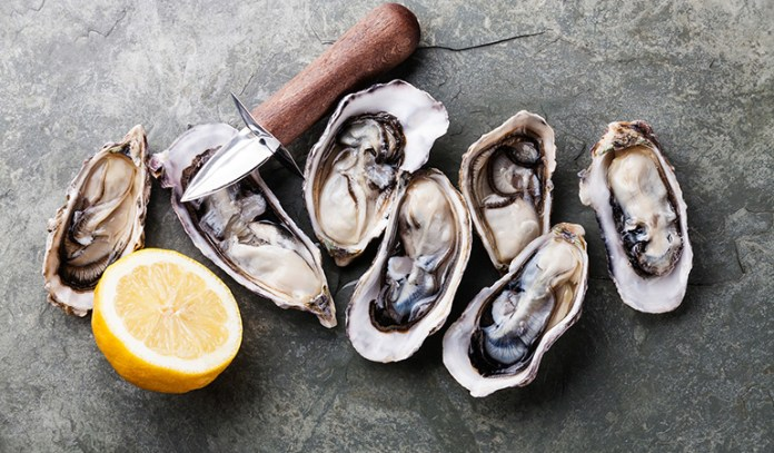 Oysters are healthy but may contain some bacteria