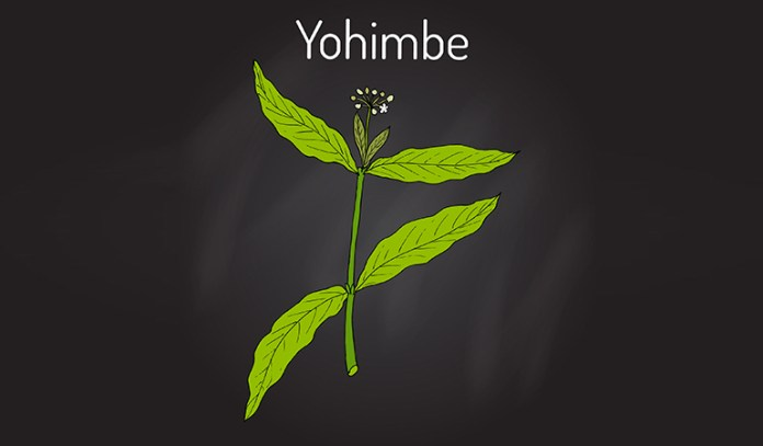 Yohimbe bark extract is used in Africa as an aphrodisiac