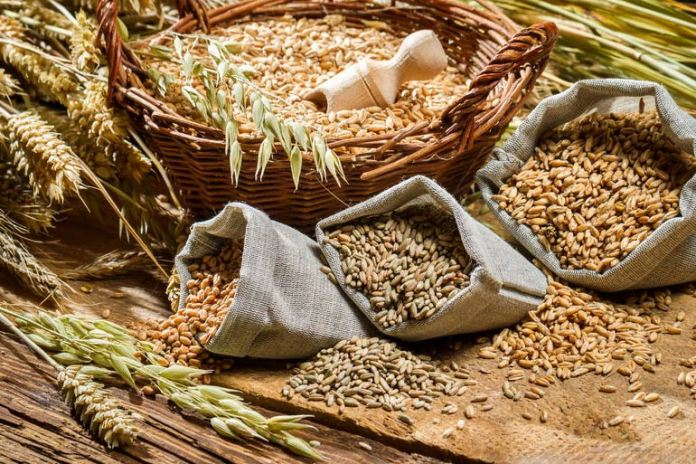 more fiber and whole grains for multiple sclerosis