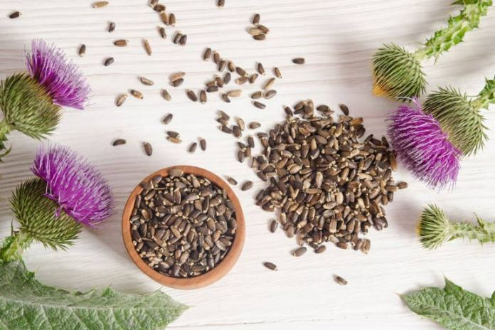 Milk thistle will help with nerve health