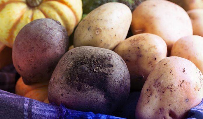 Starchy Vegetables Like Potatoes And Beets Affect Blood Glucose Levels
