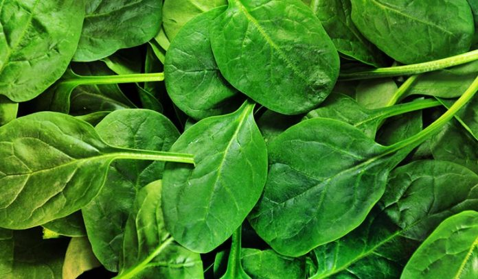Spinach And Kale Can Be Added To Any Recipe