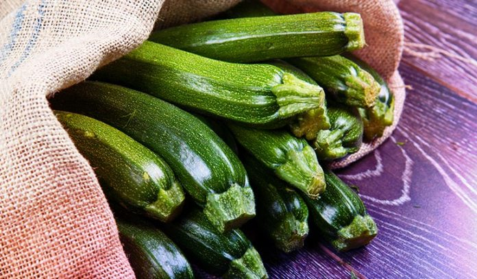 Zucchini Consists Of 94% Water
