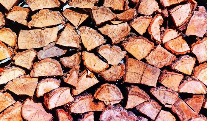 Store Woodpiles In Sunny Places
