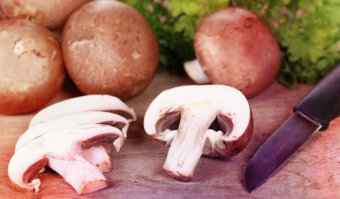 Some mushrooms can be poisonous; so buy mushrooms only from grocery stores