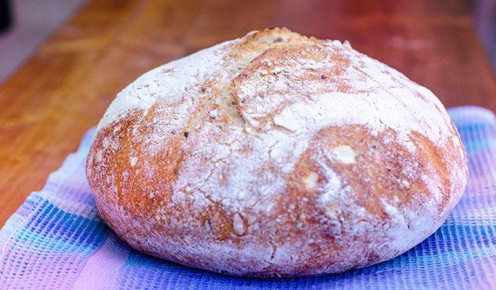 Sourdough Bread Contains Beneficial Bacteria