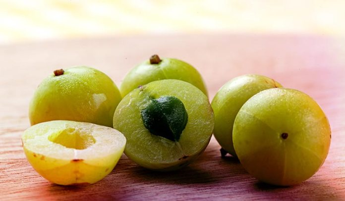 Amla has astringent properties and amla decoction makes an effective <!-- WP QUADS Content Ad Plugin v. 2.0.26 -- data-recalc-dims=