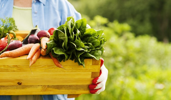 Carrots and leafy greens contain a ton of vitamins