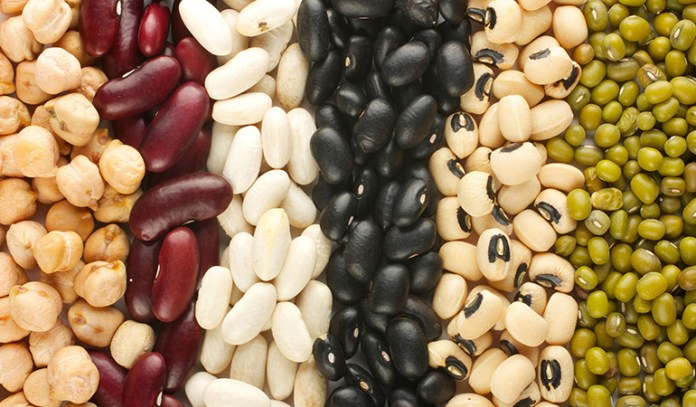 Vegans should eat protein-rich foods when exercising