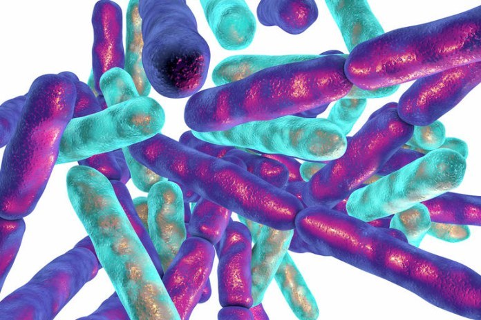 People with weak immune systems should use caution when taking probiotics