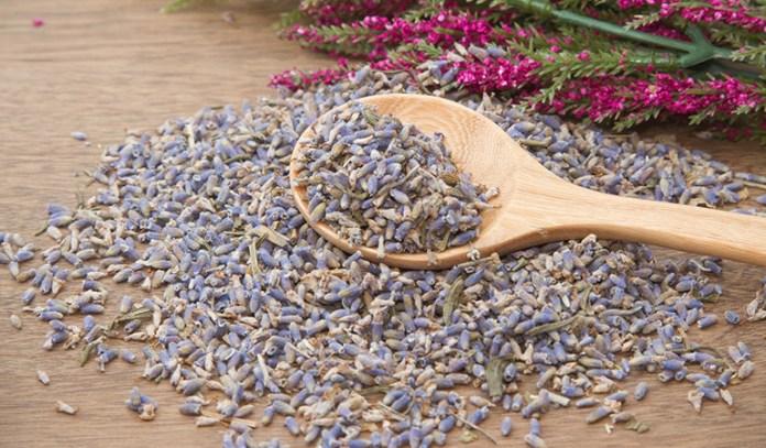 Lavender helps regulate mood and sleep.