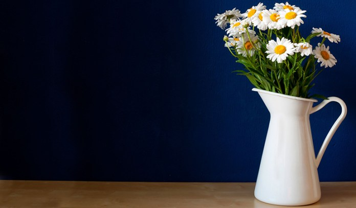 Use mouthwash to preserve houseplants and flowers.