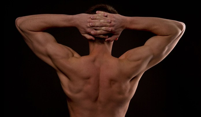 Pullovers strengthen the shoulders, chest, and upper back.