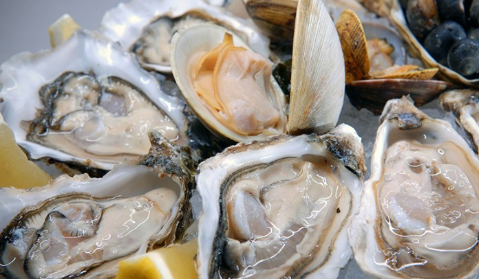 Raw oysters contain a host of bacteria