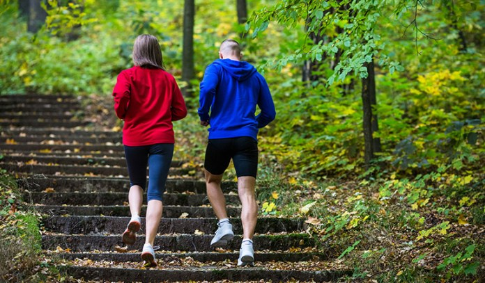 Choosing the stairs torches up to 690 calories per hour.