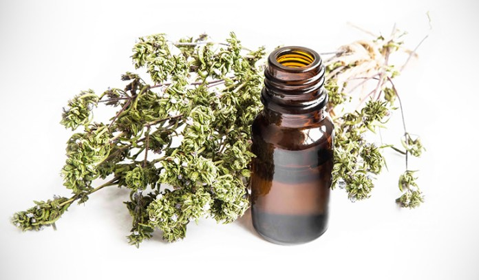 A diet rich in thyme honey may prevent certain cancer related processes.