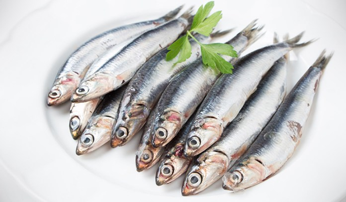 Certain fish are at a lower risk of containing mercury