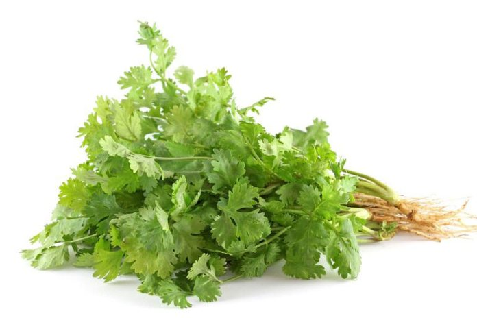 Parsley's cleansing properties and spicy taste can reduce and mask bad breath.