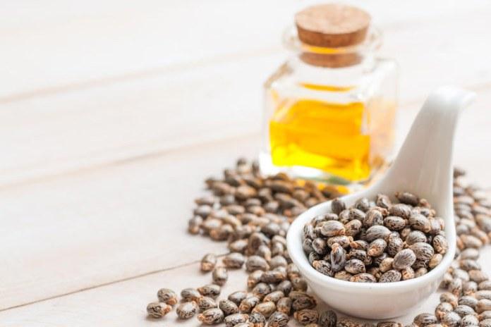 Castor oil has antibacterial, antifungal, and anti-inflammatory properties