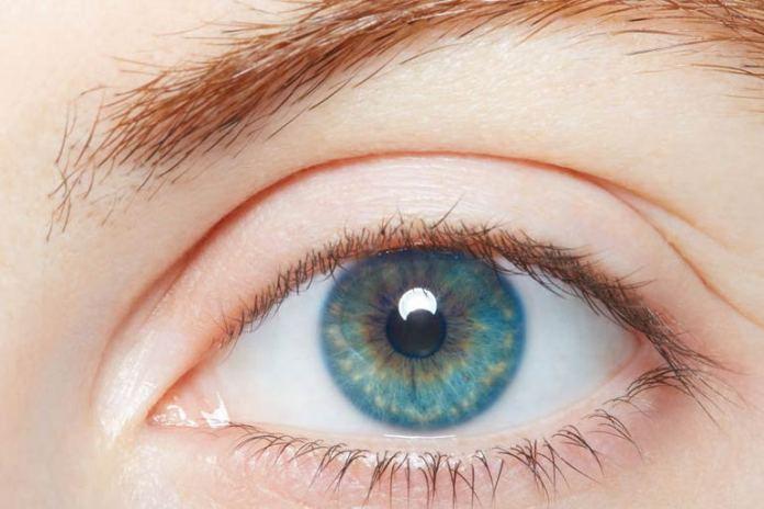 Carotenoids preserve eyesight.