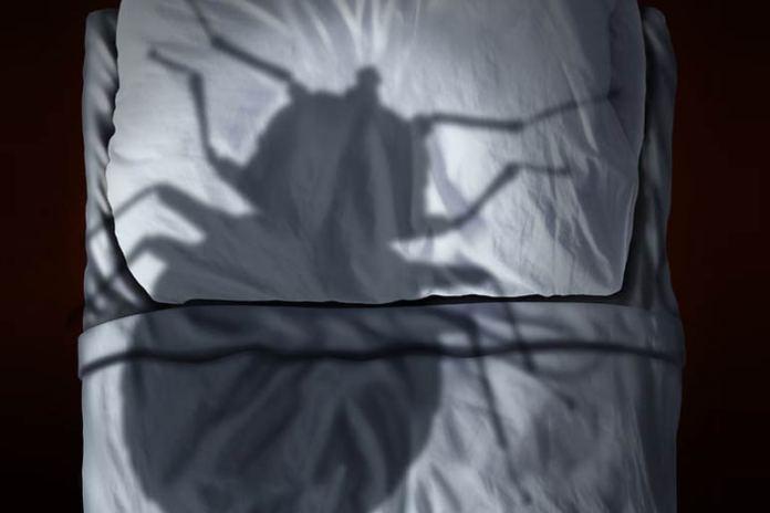 VapoRub repels insects.