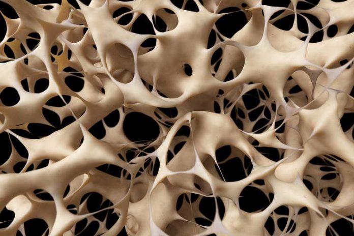 Magnesium is needed by cells that repair bones.