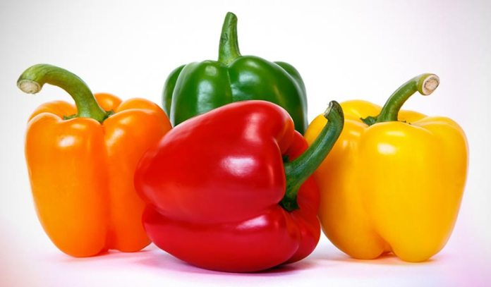 Bell pepper is very high in vitamin C content, which is very good for weight loss.