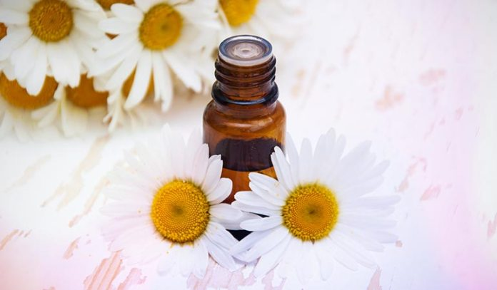 : Chamomile Is Safe To Use On Babies